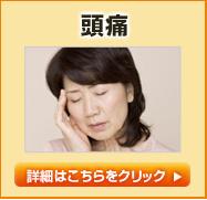 icon_zutsu.png